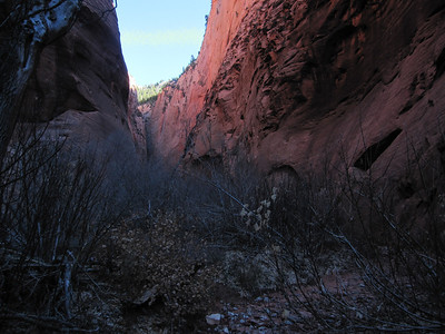 South Fork, Kolob Canyon, Zion N.P. UT - 11/20/2012