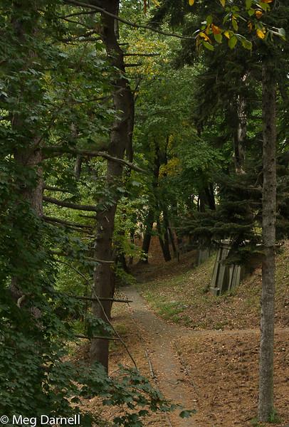 Greenwood Cemetray20131019-55.jpg