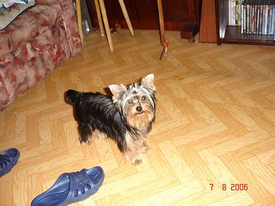 2006-08-07 Мегги
