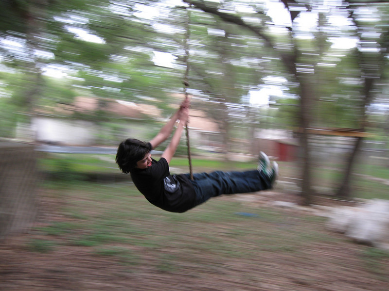 Our backyard rope swing.  Tuffy at age 14.