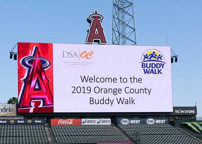 2019 DSAOC Buddy Walk