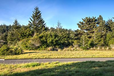 41118 Deer Trail