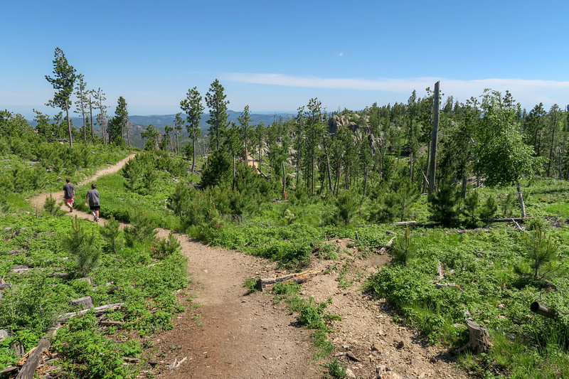 Little Devils Tower/#4B Trail -- 6,720'