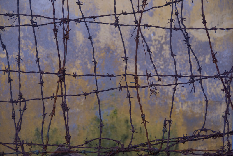 Close-up of barbed wire in Hue, Vietnam