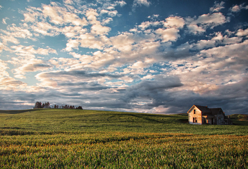 june 9 - palouse barn.jpg