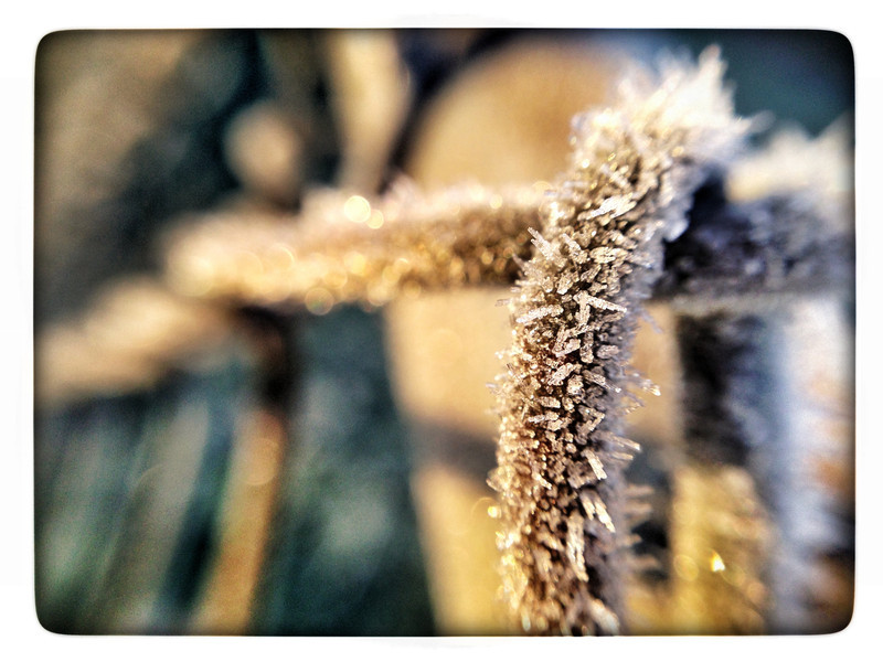 frosty start (iPhoneography)