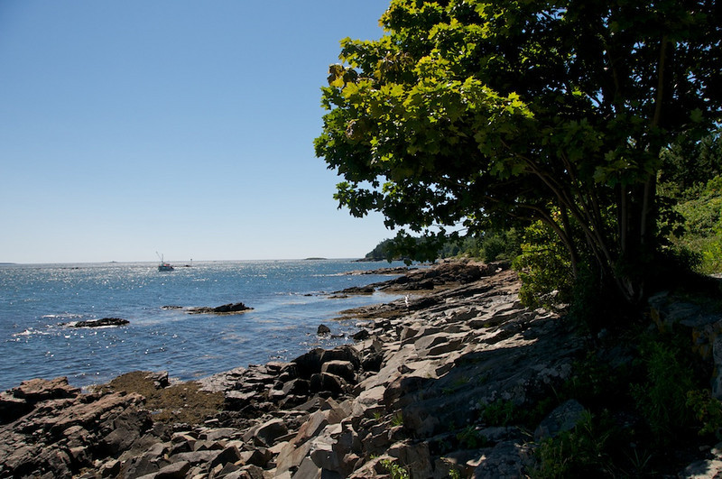 View from Shore Path, Bar Harbor
