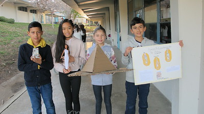 Ancient Egypt Inspires Palm Crest Projects