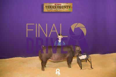 Texas County