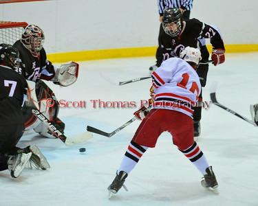Ice Hockey 2011