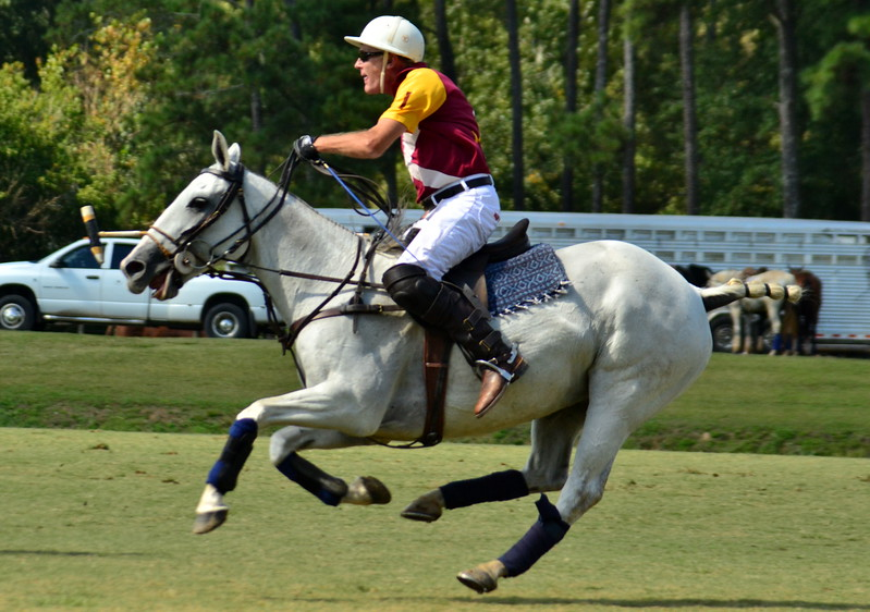 Atlanta Polo Club Galleries