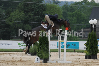 $800 7&8 Year Old USEF Young Jmpr 1.20m Wednesday