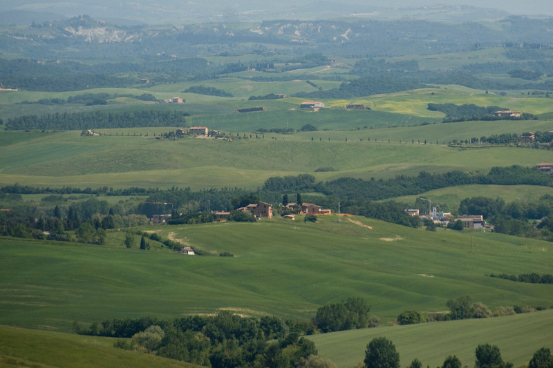 Green fields in Siena, Italy