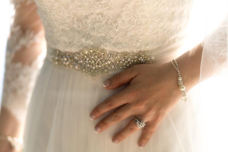Bridal Dress and Ring detail.jpg