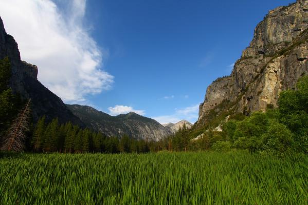 California (2008-07)