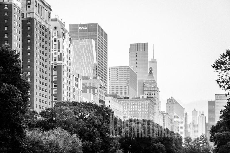 The buildings of South Michigan Ave.
