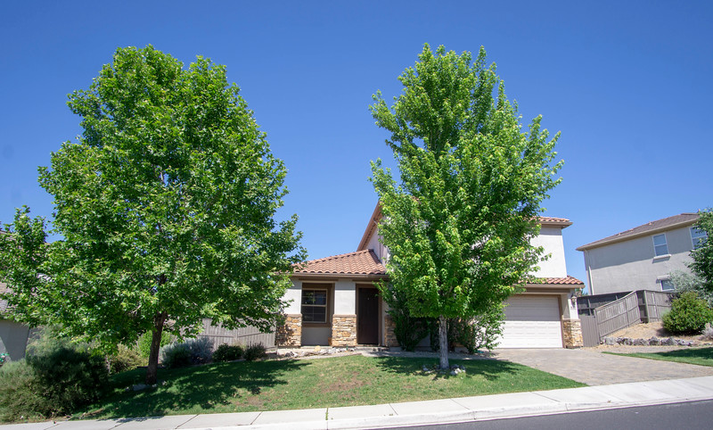 Front with large trees.jpg