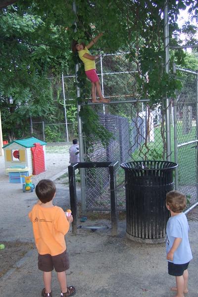 The neighborhood boys watch in amazement.