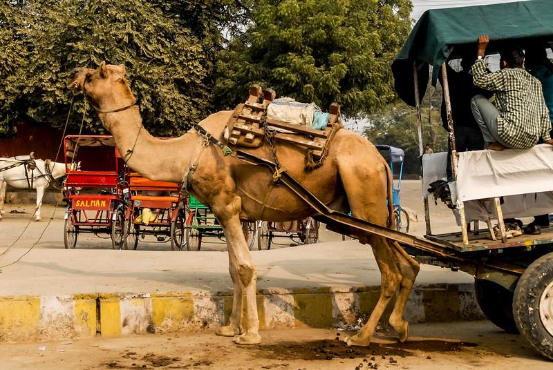 Roads_in_India_1206_019.jpg