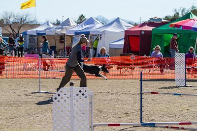 2013 GDA Southwest Regional Dog Agility