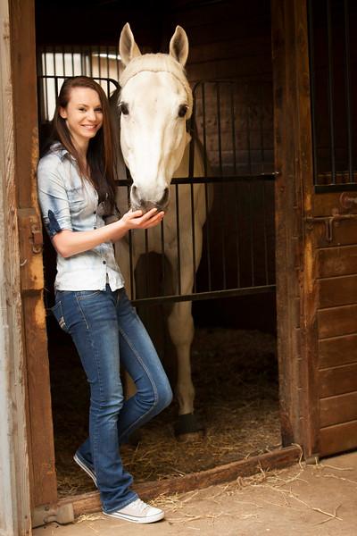 Sam horse P.jpg