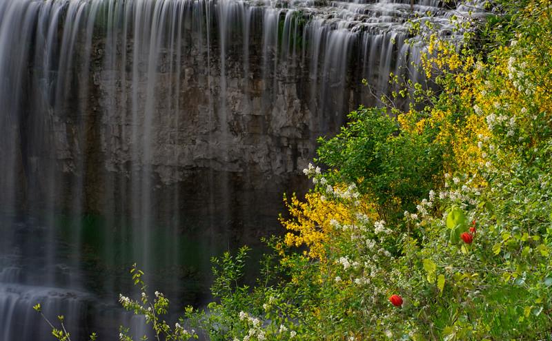 Webster Falls in Spring _1040767.jpg