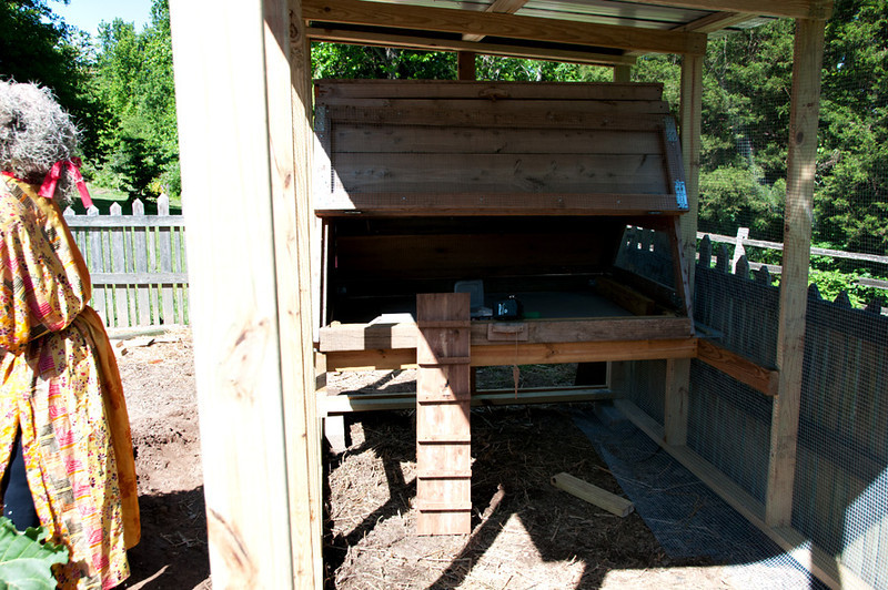 The Garden Coop plan used a box like construction for the hen house, but our existing house was a perfect substitution.  We added a floor to the house, and the ladder  goes from the ground into the house from under the house. (not as pictured)