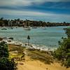Bedlam Point, Sydney, Australia<br /> The beautiful foreshore of Bedlam Bay Parramatta River Regional Park.