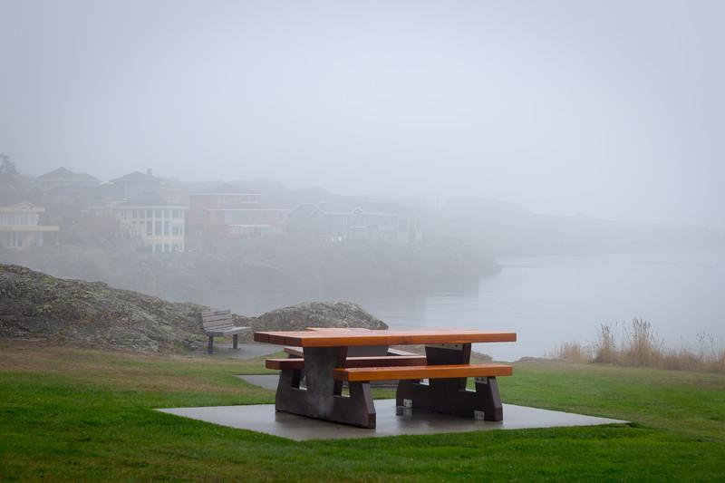 saxe point foggy picnic table.jpg