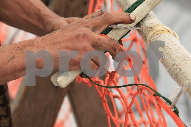 Net repair 0465.jpg
