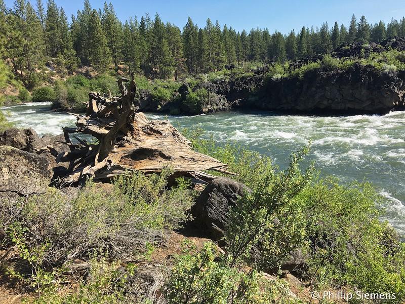 Deschutes River near Dillon Falls