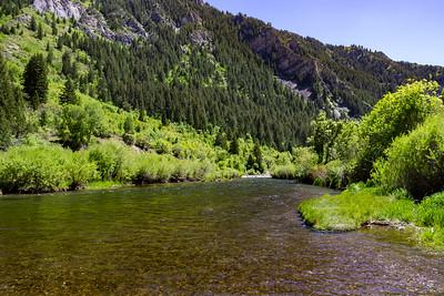 Lower Provo River, Utah