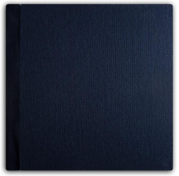 007 Navy Blue.png