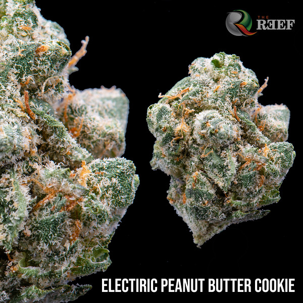 electric peanut butter cookie.jpg