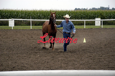 Horse Show 2011