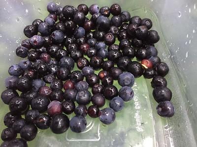 2015-07-29 Berries in Girdwood & Alyeska