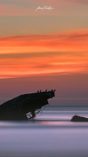 Sunken_Ship_Cape_May_Mobile_Wallpaper.jpg