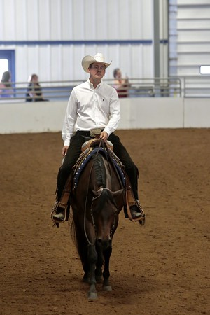 Pleasure/Horsemanship Classes