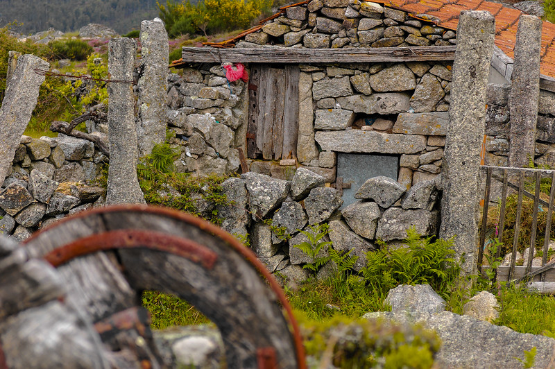 Vouzela-PR2 - Um Olhar sobre o Mundo Rural - 17-05-2008 - 7452.jpg