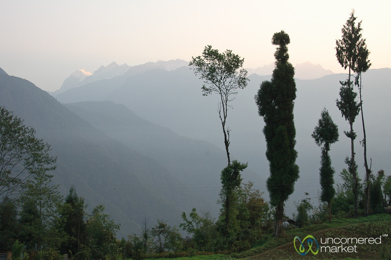 View of the Mountains - Lake Khecheopalri, Sikkim