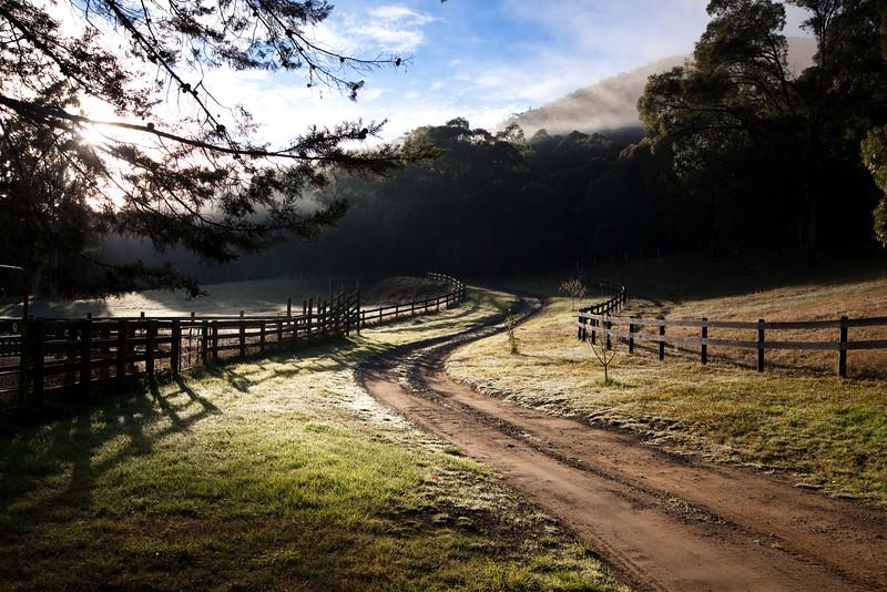 Tooronga River Sanctuary - June