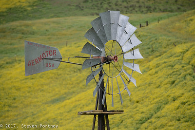 Carrizo Plain - March 25-26, 2017