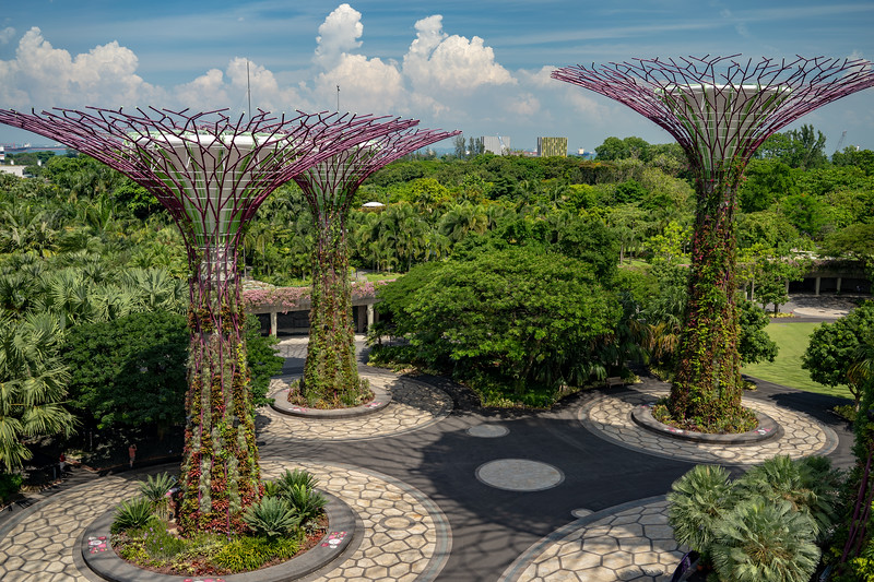Singapore-19-063.jpg