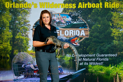 Auction Alligator Portraits, August 16, 2013