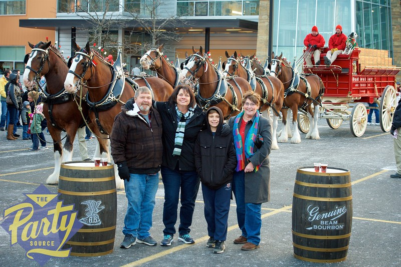 Clydesdale Portraits 217.jpg