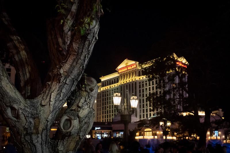 Vegas-0313.jpg