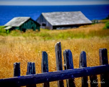 USA Sea Ranch, CA