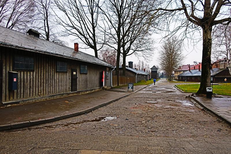 Auschwitz -Birkenau28.JPG