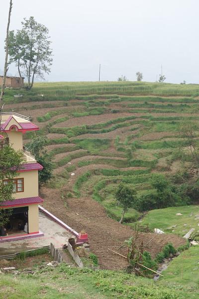 terraced fields ready for planting near Nagarkot