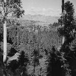 ELYSIAN PARK 21 B.png